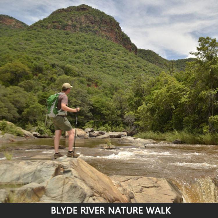 Camminata Nella Natura Lungo Il Fiume Blyde