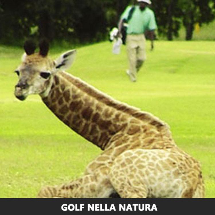 Golf Nella Natura